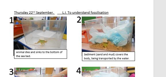 Fossilisation process