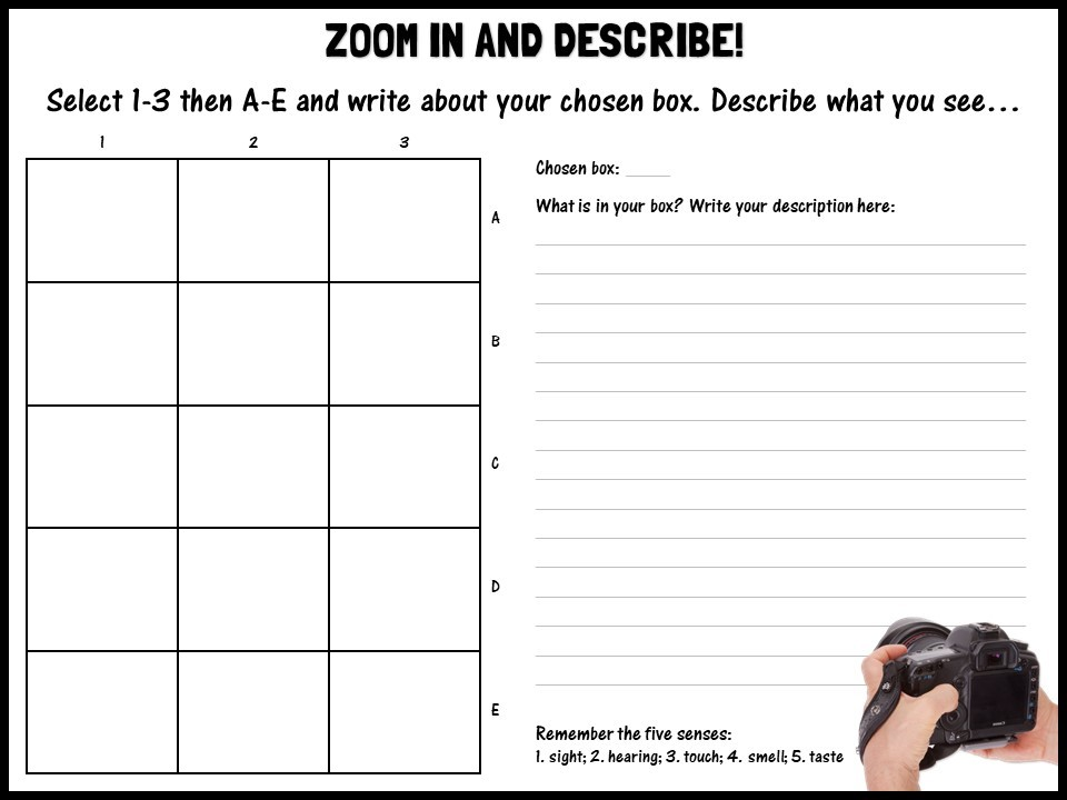Zoom in and describe!