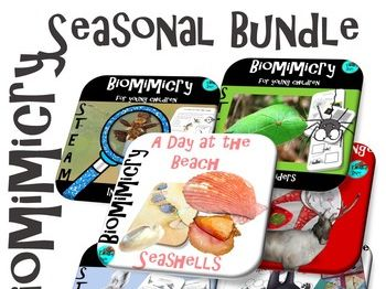 Seasonal Nature Bundle - STEAM, Biomimicry