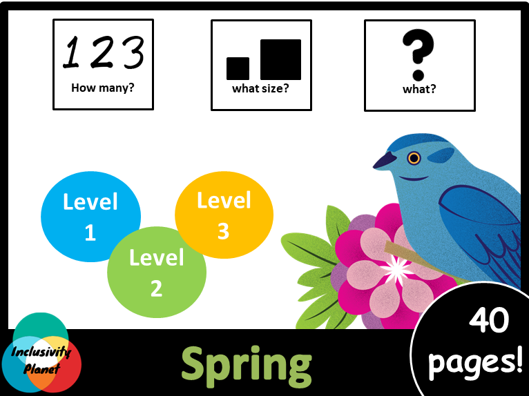 Spring HOW MANY, WHAT SIZE, WHAT? Adapted book Level 1, Level 2 and Level 3