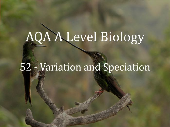 AQA A Level Biology Lecture 52 - Variation and Speciation