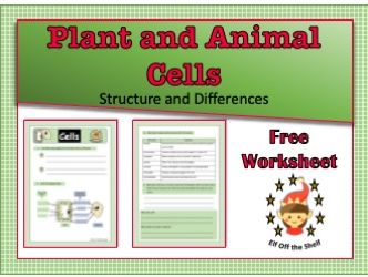 Plant and Animal Cells Structure and Differences Worksheet KS3