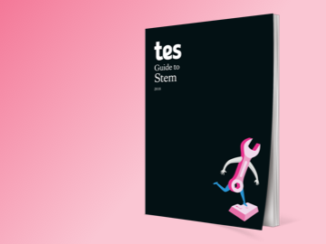 Tes Guide to Stem