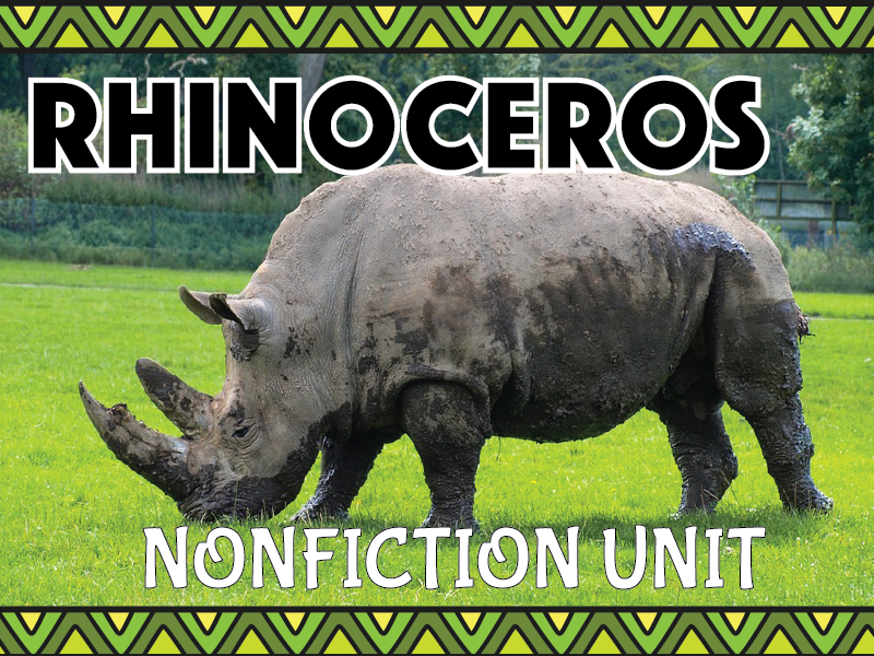 Rhinoceros Nonfiction Unit