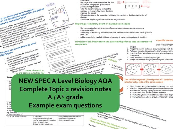 NEW AS Biology AQA topic 2 CELLS revision book - A*/A grade