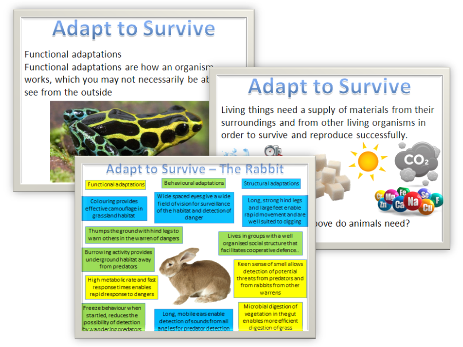 Adapt to survive - Extremophiles AQA Biology 2016