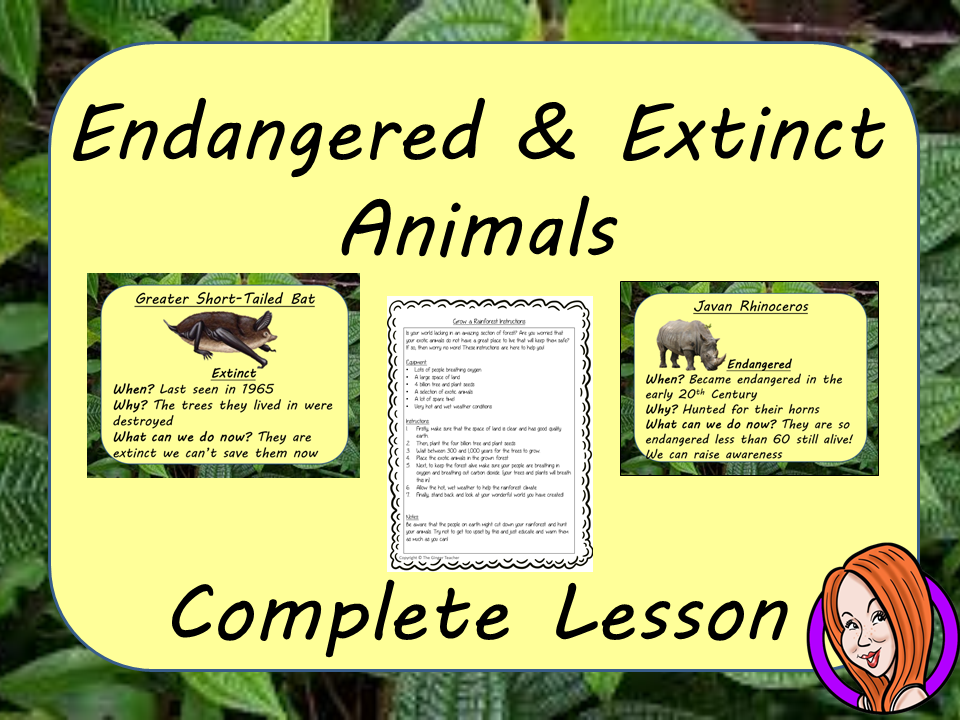Endangered and Extinct Animals of the Rainforest  -  Complete STEAM Lesson