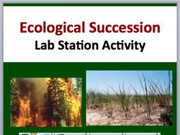 Ecological Succession - Primary and Secondary - 7 Engaging Lab Stations