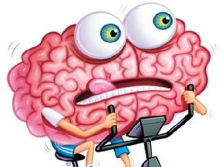 Brain Gym 101
