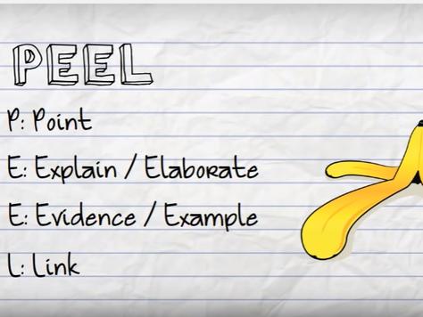 Year 9 English PEEL worksheet OMAM