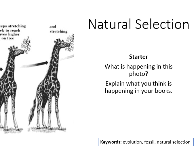 AQA Activate 2 Natural Selection