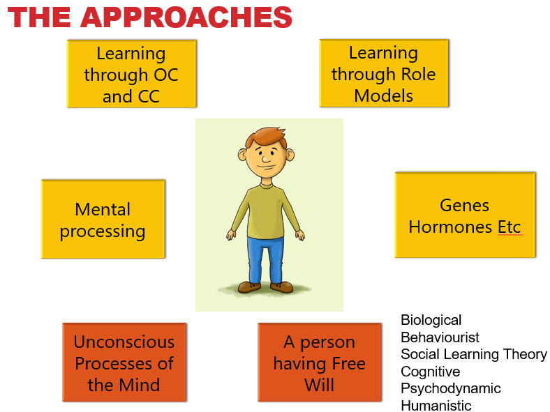 The Approaches - AQA Psychology Full unit of work