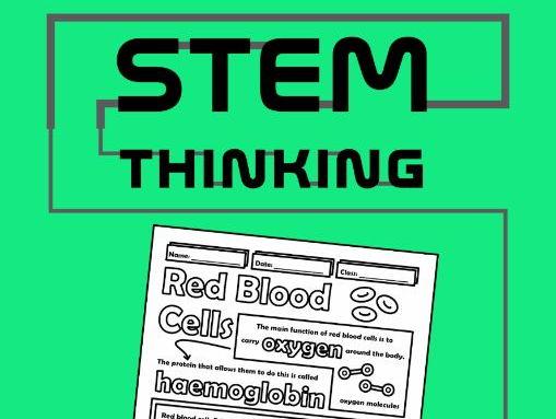 Red Blood Cells Biology Doodle Notes