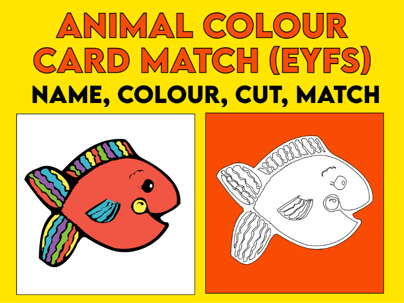 Matching Colour Animal Cards EYFS