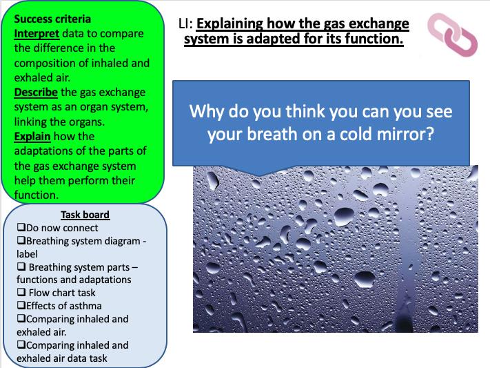 KS3 Breathing (AQA Activate)