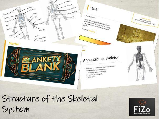 BTEC Sport - Structure of Skeletal System