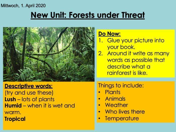 KS3 Forest Under Threat (Edexcel 9-1) 1-Biomes