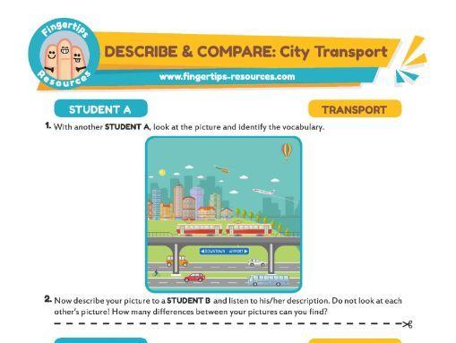 DESCRIBE & COMPARE: City Transport