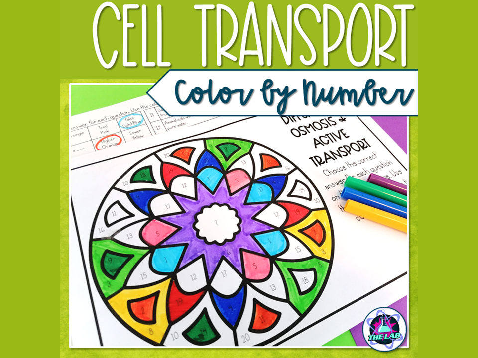 Diffusion, Osmosis & Active Transport Colour by Number