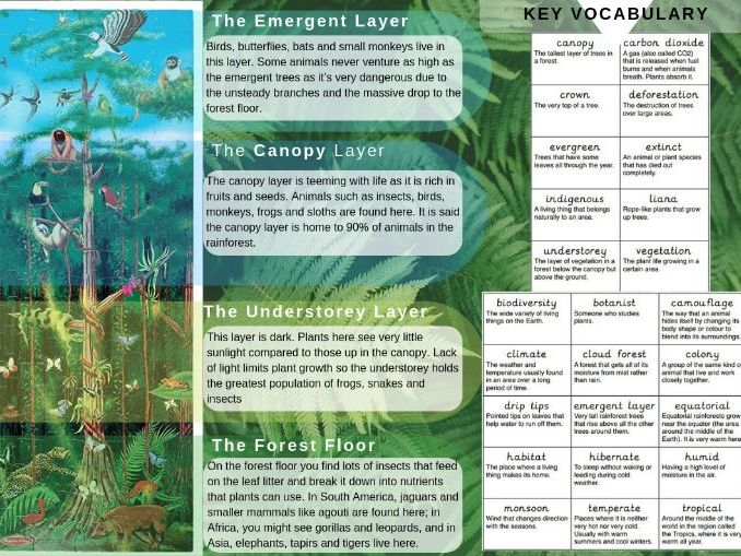 Topic Overview Sheet for Y4 Children (Fact and Vocabulary Mat)