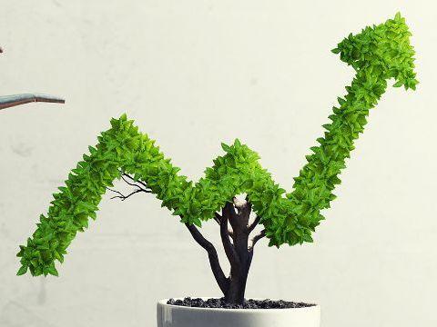 Presentation on Business Growth - Growth (A Level Edexcel Business Studies)