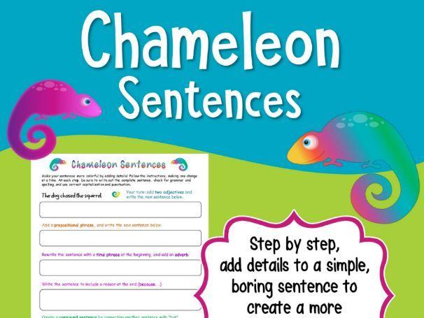 Writing Sentences - Adding Details