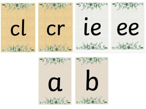 Phonics Flashcards (Natural Themed)