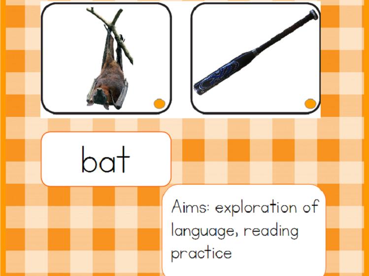 Homonyms - Montessori Word Study