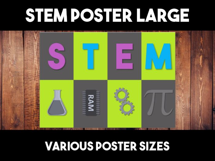 STEM Wall Display Poster