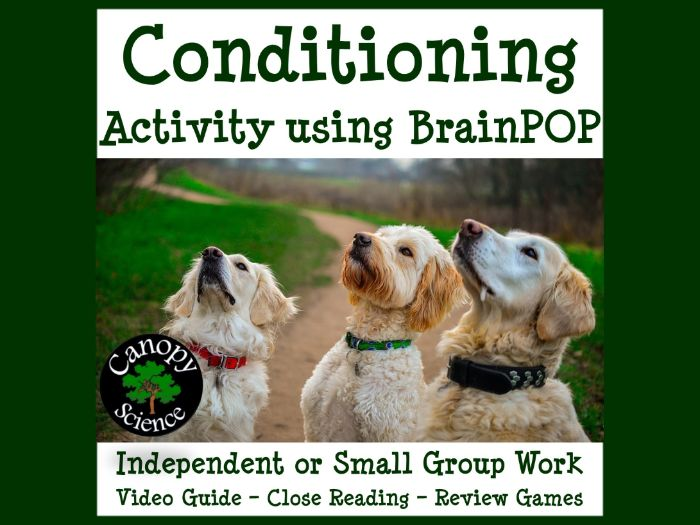 Conditioning Activity using BrainPOP