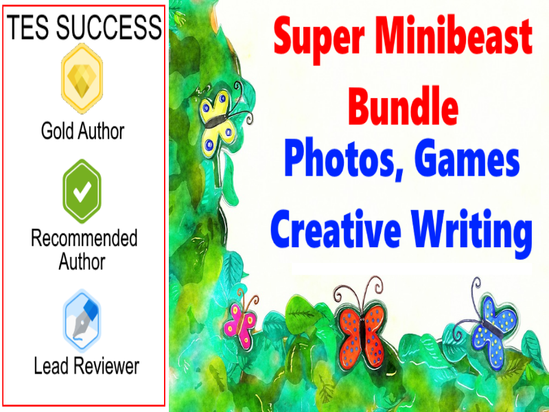 Minibeasts Bundle