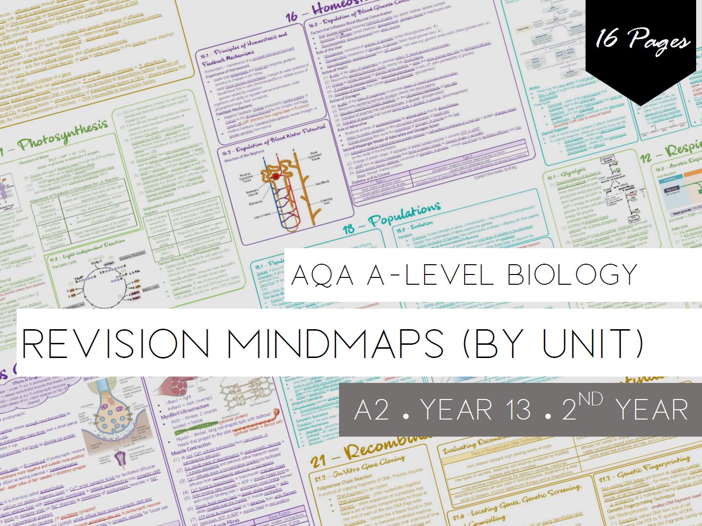 AQA A-Level - Year 13 / 2nd Year (Revision Mindmaps)