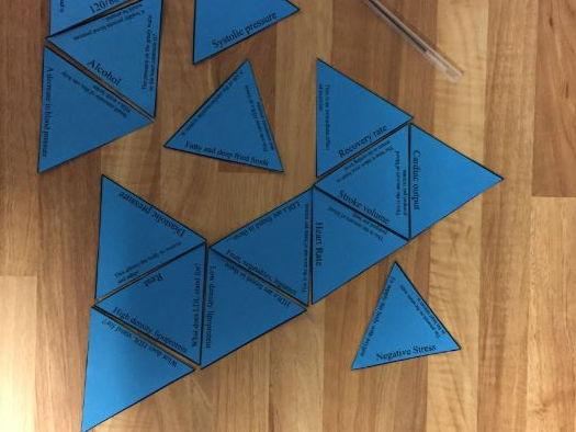 GCSE PE 9-1 AQA Muscles of the body Tarsia Triangle Puzzle