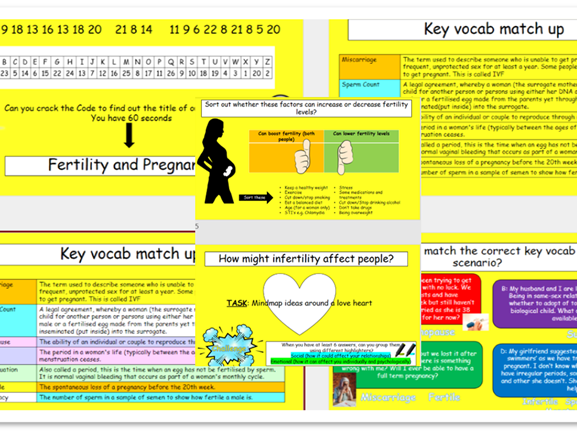 Pregnancy and Fertility Lesson & Workpack