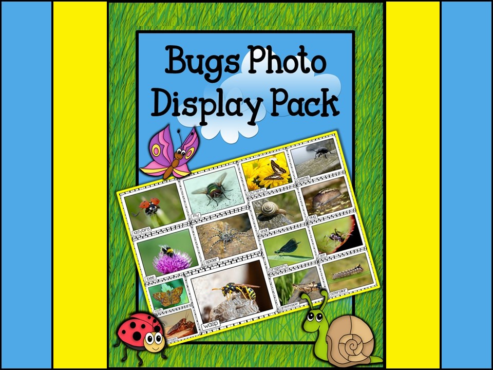 Minibeasts Printable Photo Posters Display Pack