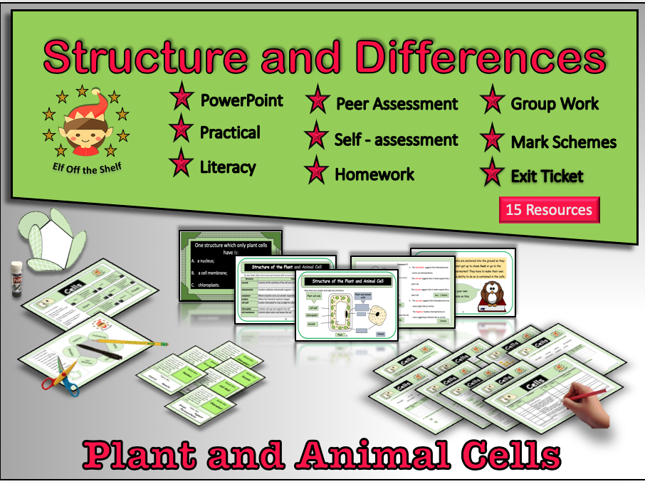 Plant and Animal Cells-Structure and Differences KS3 ...