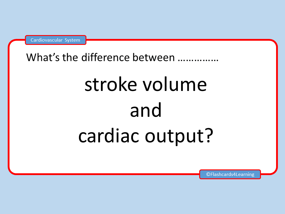 GCSE PE: Cardiovascular System - What's the difference between?
