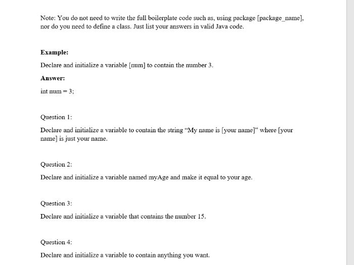 Introduction to Java - Variables Homework Sheet