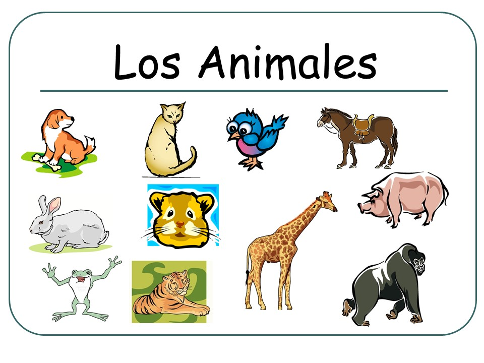 Los Animales (Flashcards) SPANISH