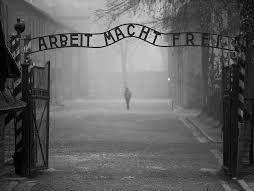 Discrimination and Persecution in Nazi Germany - The Road to the Final Solution and The Holocaust