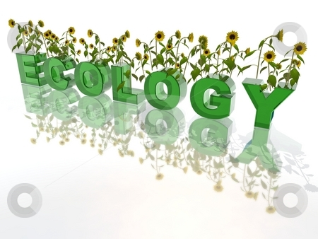 GCSE Biology new spec Ecology unit for foundation and higher worksheets