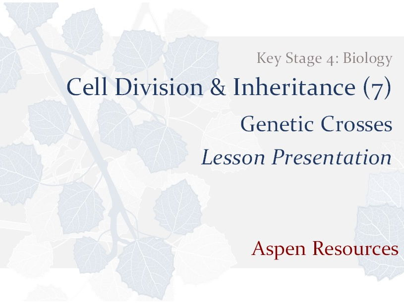 Genetic Crosses  ¦  KS4  ¦  Biology  ¦  Cell Division & Inheritance (7)  ¦  Lesson Presentation