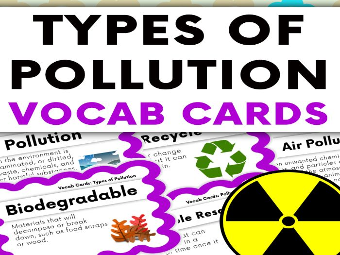 Humans and The Environment: Types of Pollution Vocabulary Cards
