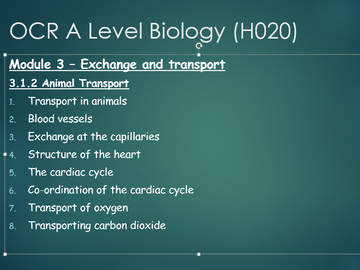 OCR A level Biology Module 3 - Transport in animals topic