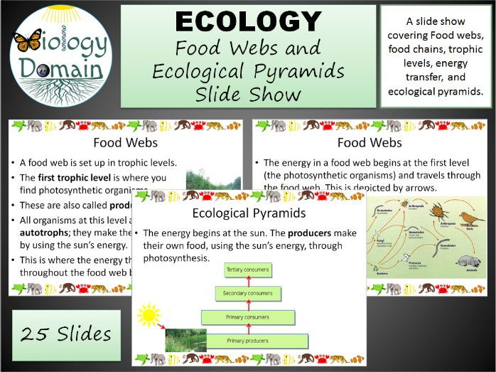 Ecology: Food Webs and Ecological Pyramids Slide Show