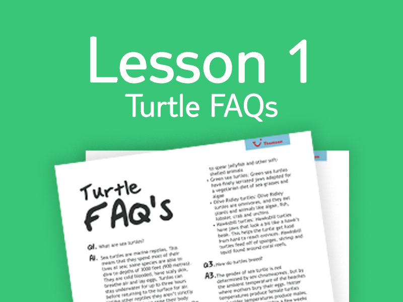 Lesson 1 - FAQs for teachers