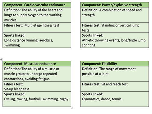 GCSE PE AQA 9-1 Components of fitness revision flash cards