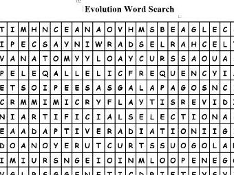 Evolutionary Terms Word Search
