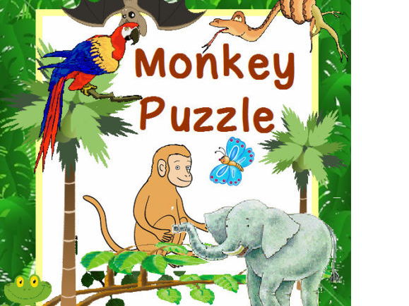 MONKEY PUZZLE Teaching resources Story Literacy Display EYFS