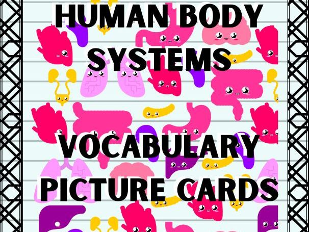 Science Vocabulary Picture Cards - Human Body Systems